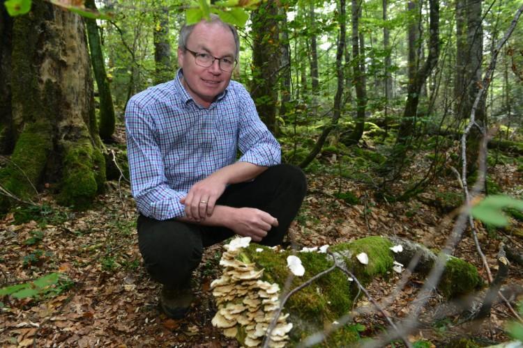 LH-Stv. Dr. Pernkopf im Wald