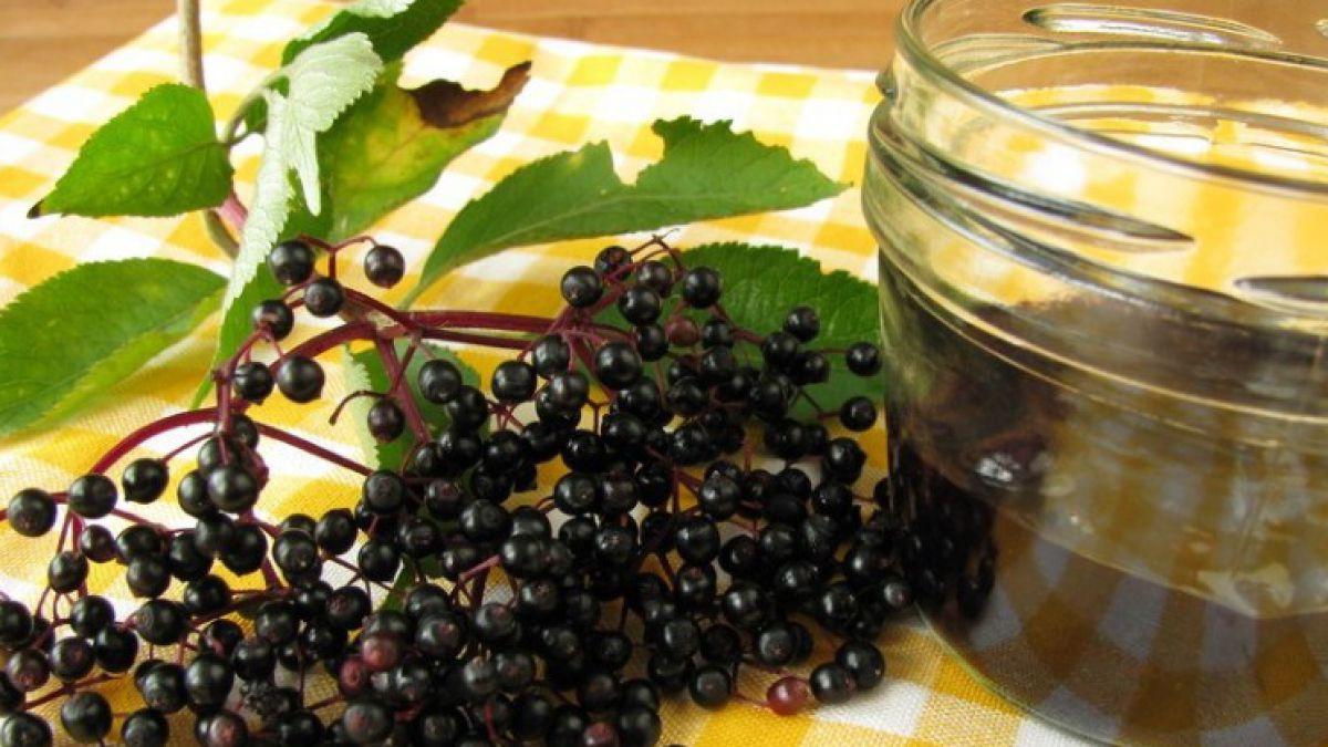 Schwarze Holunderbeeren und Fruchtaufstrich
