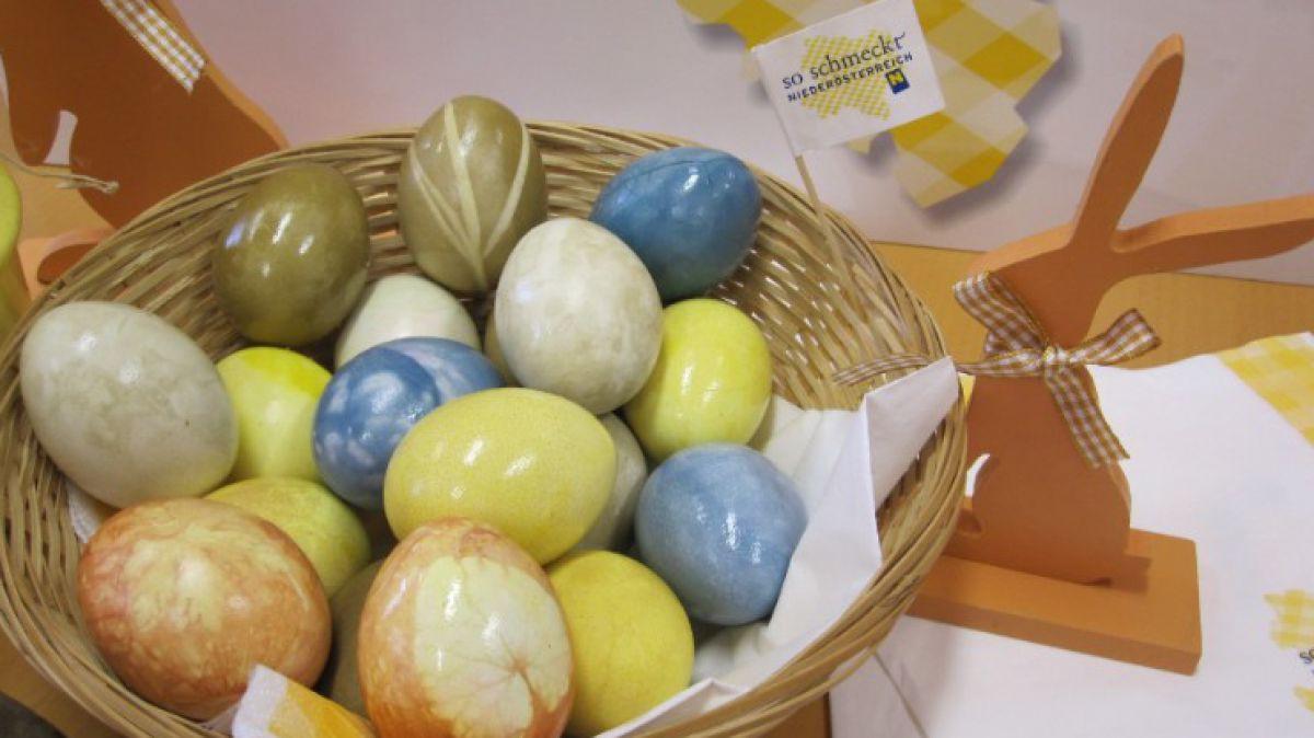 Nest im selbstgefärbten Eiern