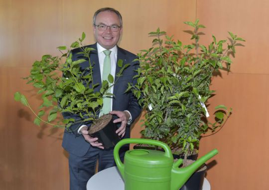 Foto (v.l.n.r.): LH-Stellvertreter Dr. Stephan Pernkopf